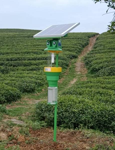 太阳能捕虫器 3BCT-10