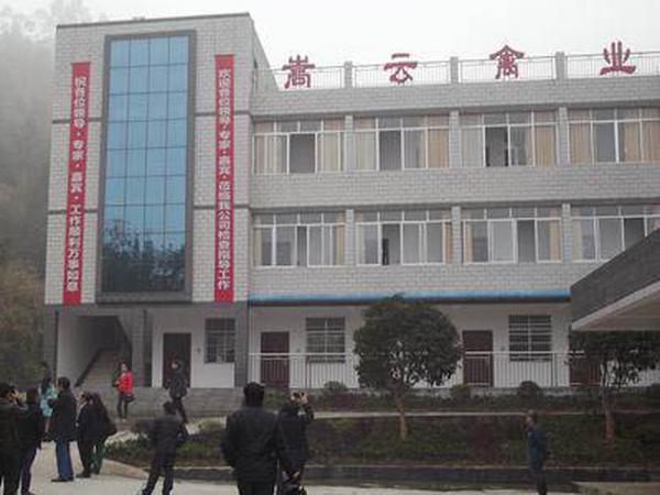 湖南洪江区计划投入5亿元开发雪峰乌骨鸡产业
