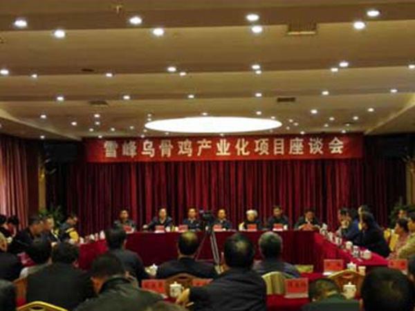 洪江雪峰乌骨鸡产业化项目座谈会在洪江区举办