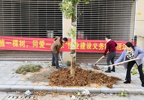 恒业建设开展3.12植树活动