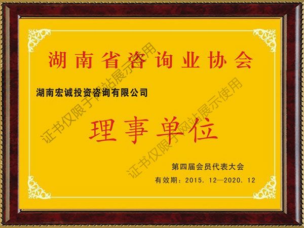 湖南省咨询协会理事单位