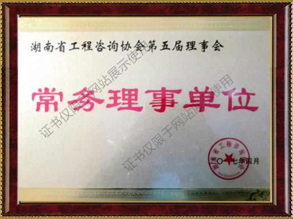 湖南省工程咨询协会第五届理事会常务理事单位