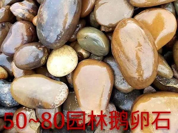 50-80mm鹅卵石