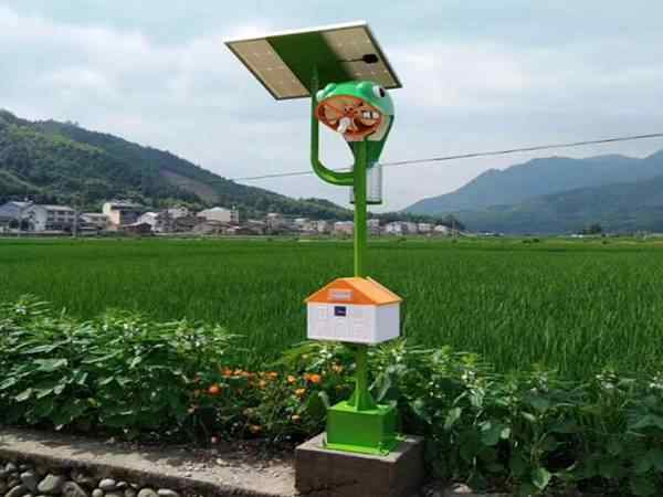 广西三江稻鱼生态基地