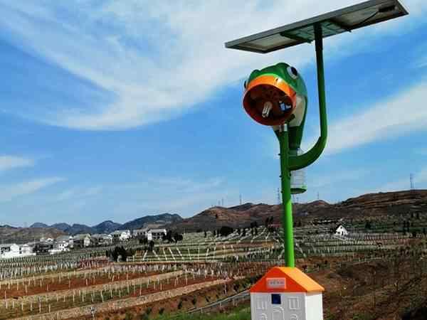 陕西丹凤县葡萄洒制造基地