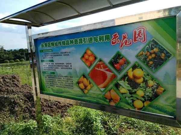 重庆市经济作物示范园