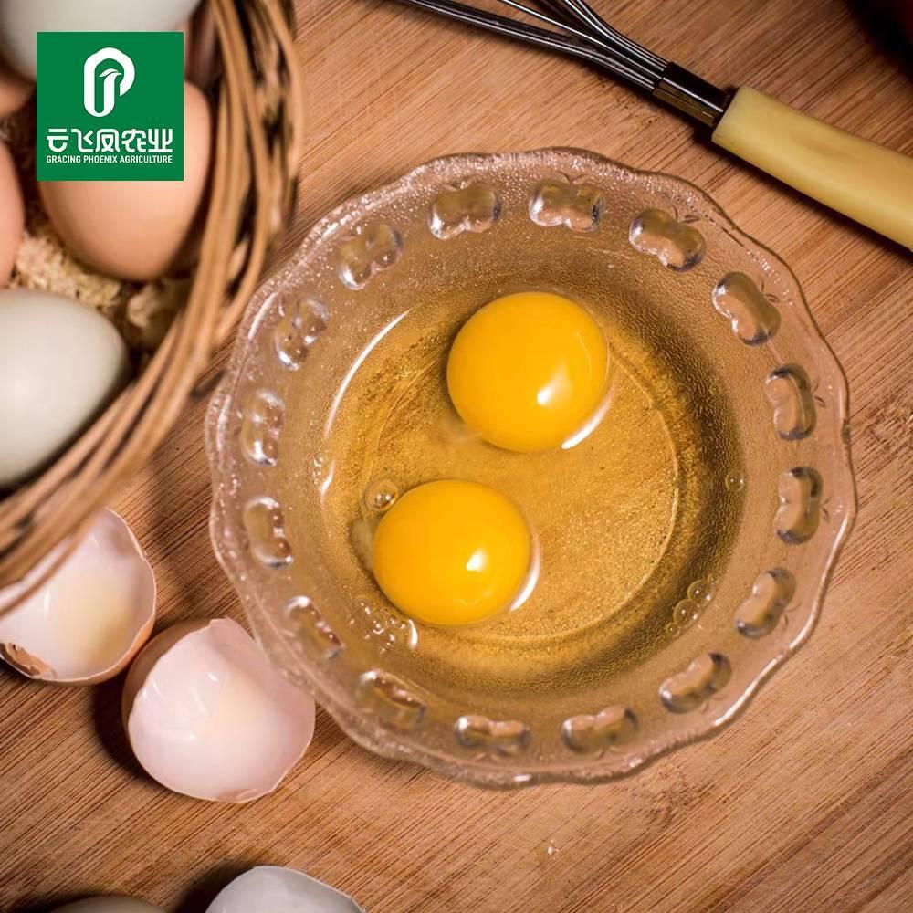 洪江雪峰乌骨鸡蛋农家纯粮乌骨鸡蛋新鲜有机放养散养土鸡蛋30枚