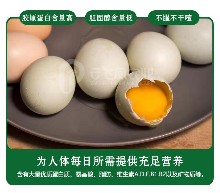 鸡蛋750_r7_c1