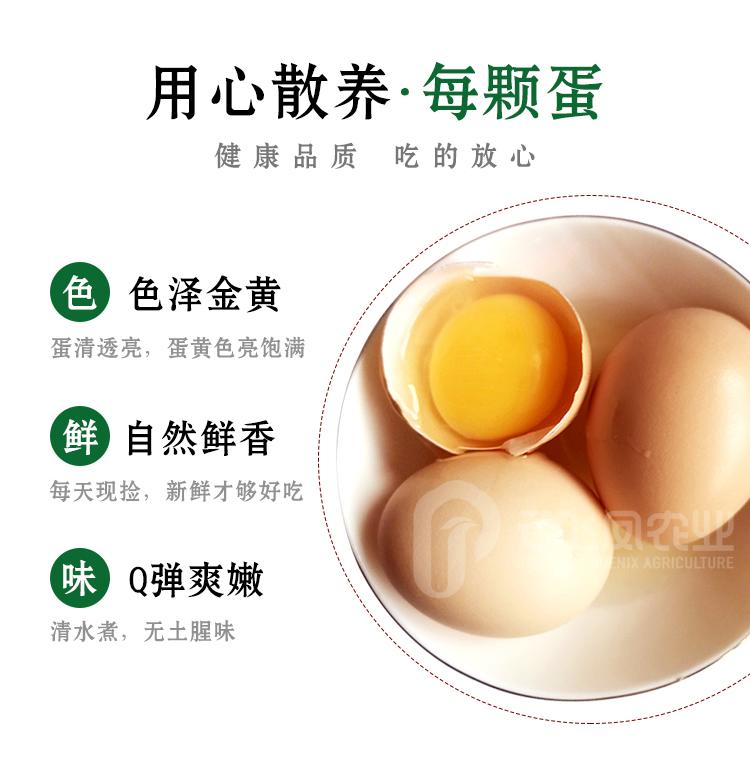 鸡蛋750_r6_c1