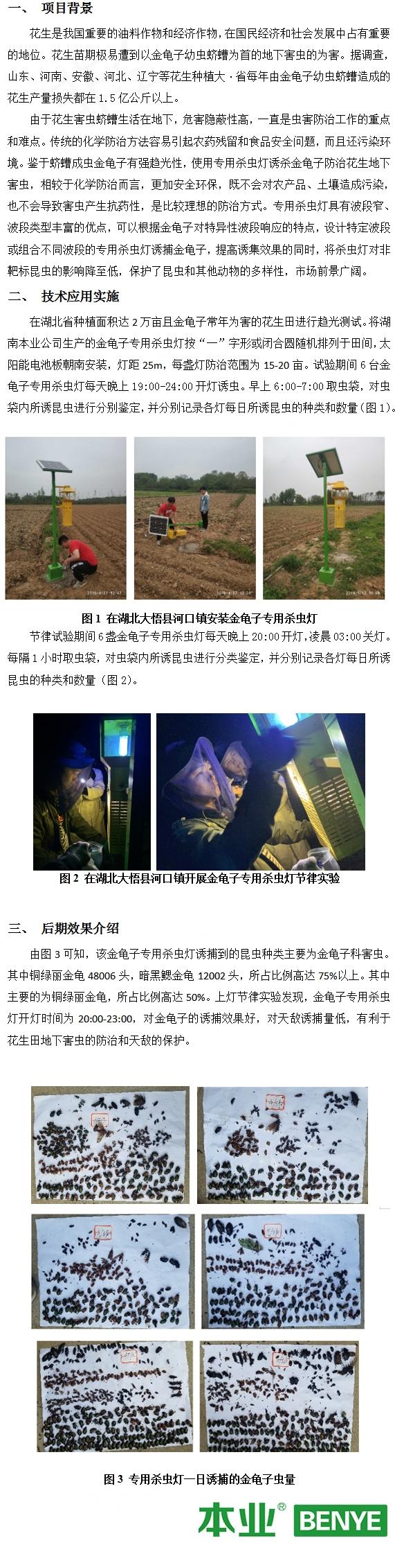 金龟子专用杀虫灯对湖北大悟花生害虫的防治效果_03
