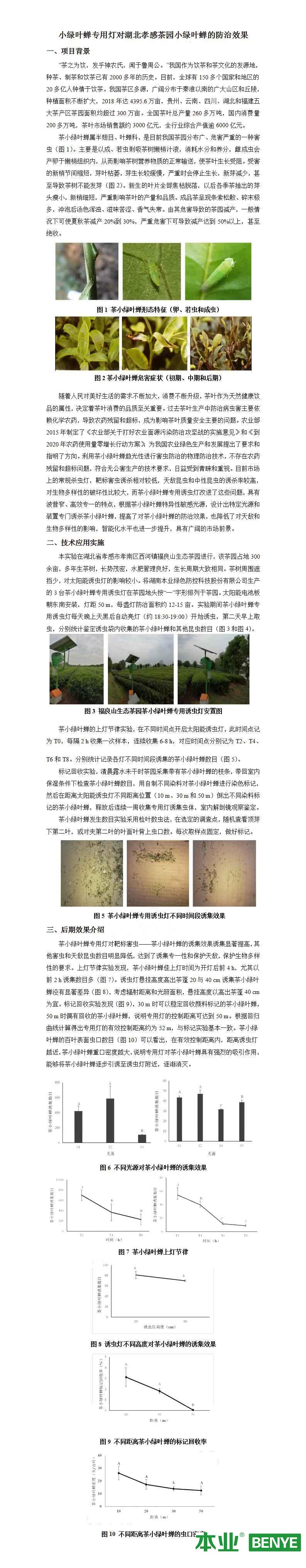 小绿叶蝉专用灯对湖北孝感茶园小绿叶蝉的防治效果