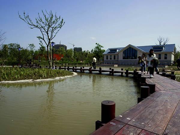 白马湖公园1