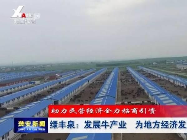 """绿丰泉:发展牛产业 为地方经济发展添""""牛""""气"""