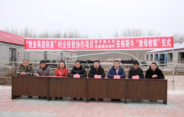 """内蒙古绿丰泉农牧科技有限公司安格斯""""放母收犊""""政策解读"""