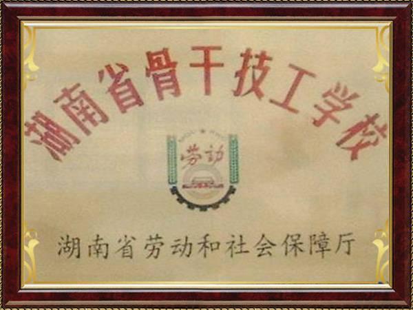 湖南省骨干技能学校