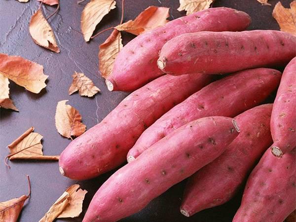 冬天食红薯好处多多