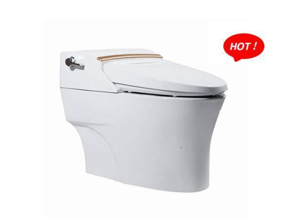 智能座厕W8121D05
