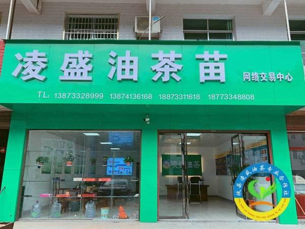 互联网交易中心