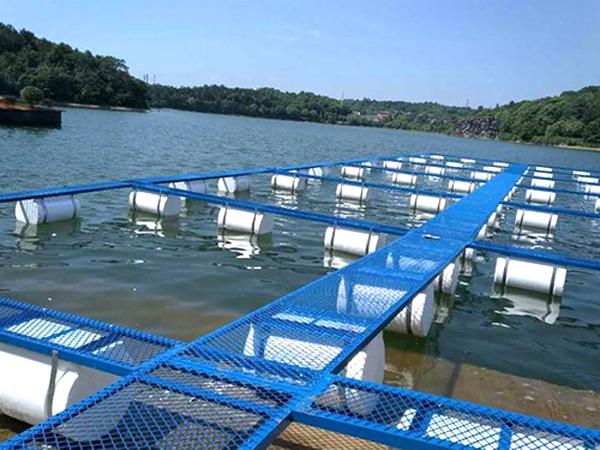 网箱养鱼的特点与高产原理
