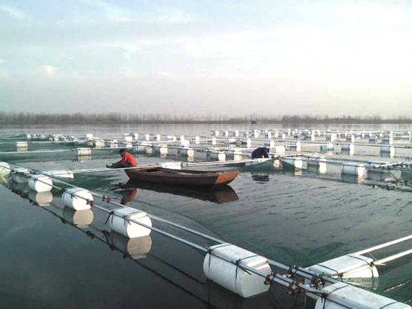 水库捕捞技术