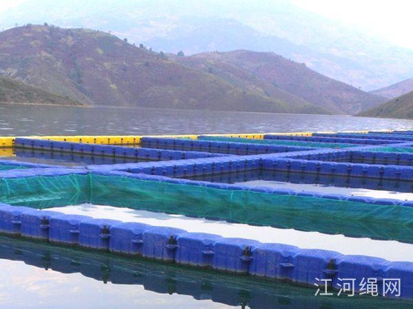 云南普洱网箱养殖基地
