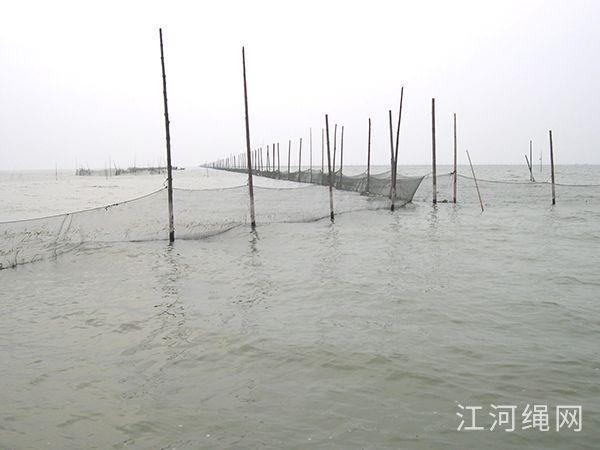 湖南益阳某大型渔场养殖用拦网