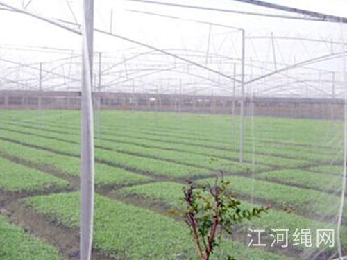 农业类用网