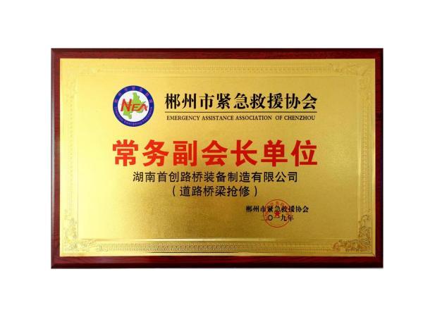 郴州市应急救援协会常务副会长单位