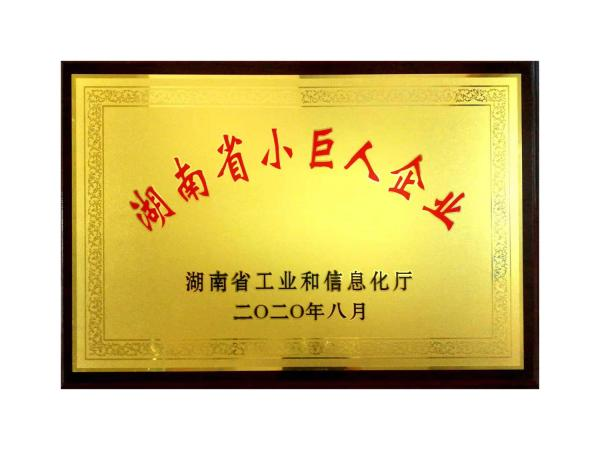 湖南省小巨人企业
