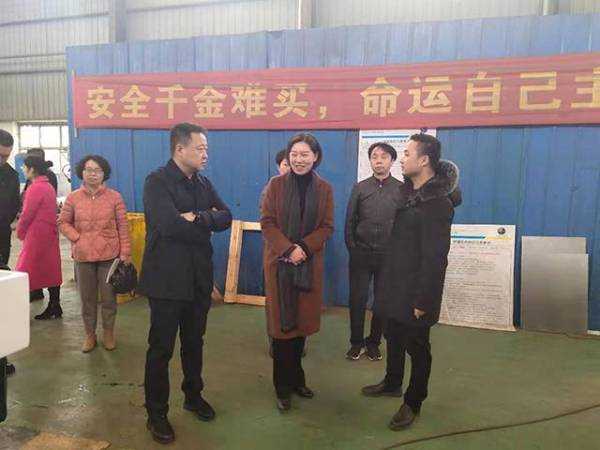 The leaders of Yuhu District came to Hunan Max to guide the work