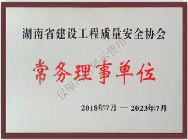 湖南省建设工程质量安全协会常务理事单位