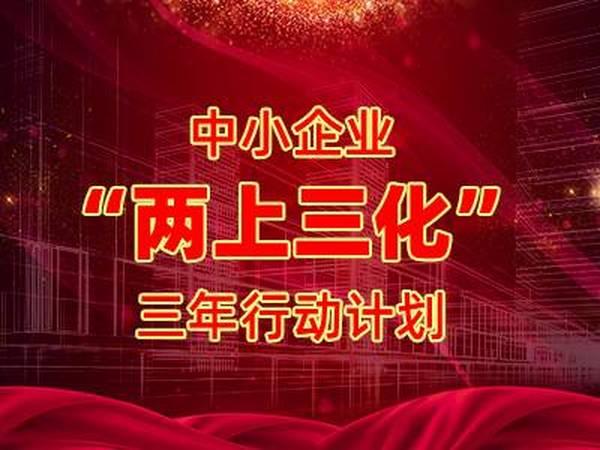 """2021年湖南将启动中小企业""""两上三化""""三年行动计划"""