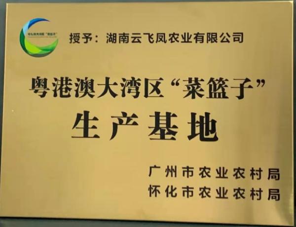 """通过粤港澳大湾区""""菜篮子""""生产基地认证"""