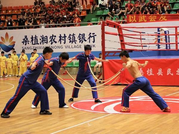 第四届贺龙杯武术擂台争霸赛开幕式表演