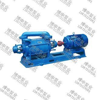 2sk-p1水环真空泵