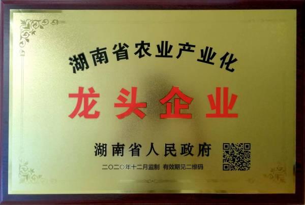 湖南省龙头企业